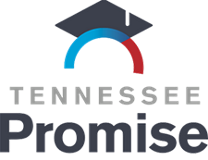 logo for tnpromise