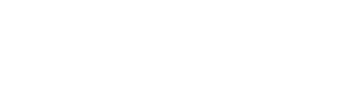 The Flagler College Logo