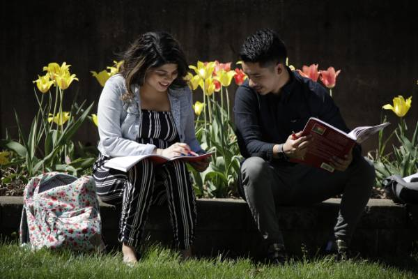 Two students outside in front of flowers studying together.