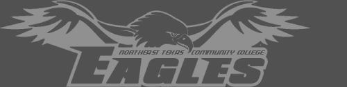 NTCC Eagles Athletics